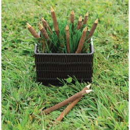 Twig Pencils (Set of 12)