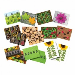 Ladybug Activity Cards