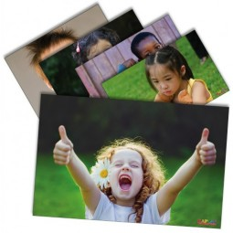 Social and Emotional Poster Set (Set of 12)