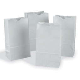 White Craft Bags (Set of 100)